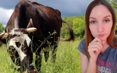 My Diet, Veganism and the Ethics of Animal Killing